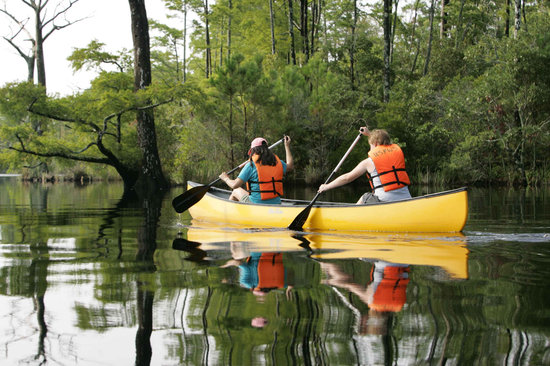 Teen Travel Camp, Outdoor Education, Summer Nature Experience